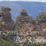 Blue Mountains oder 900 Stufen die ich niemals vergessen werde!