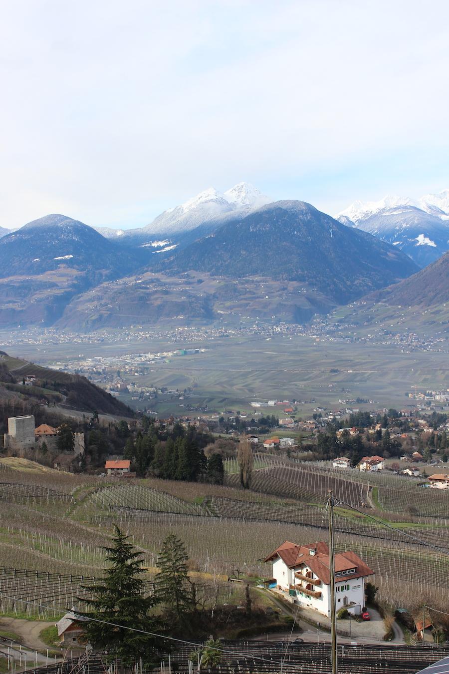 Apfeloase Schenna Südtirol 4