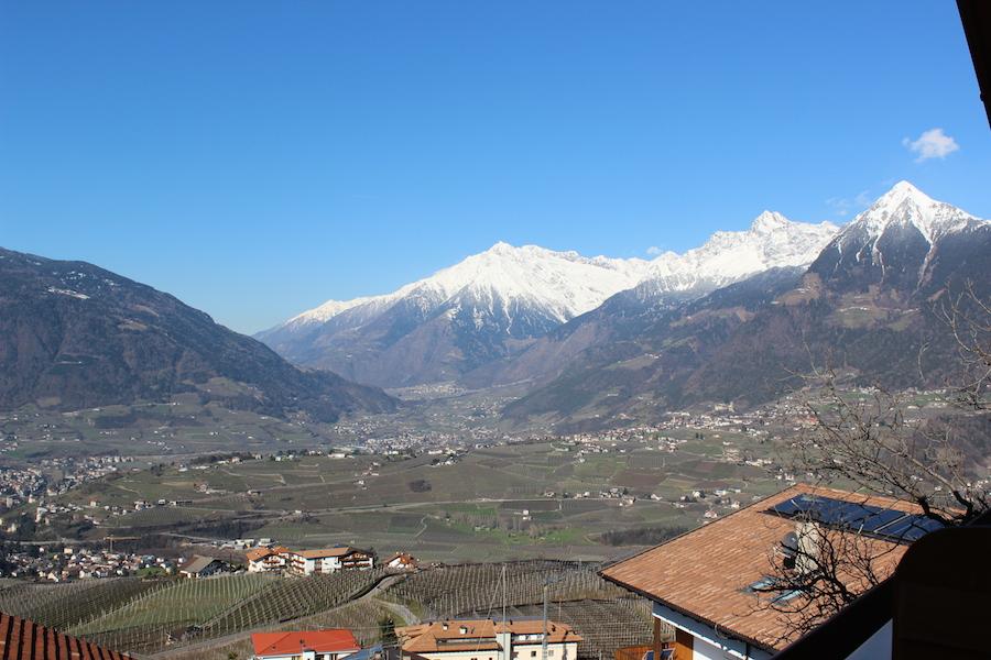 Apfeloase Schenna Südtirol 8