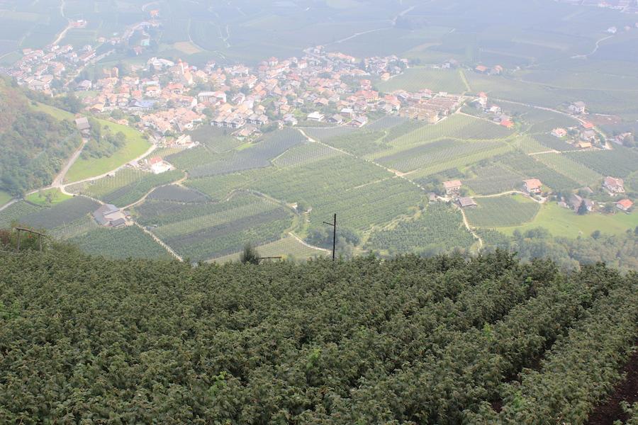 Dursterhof Südtirol 15