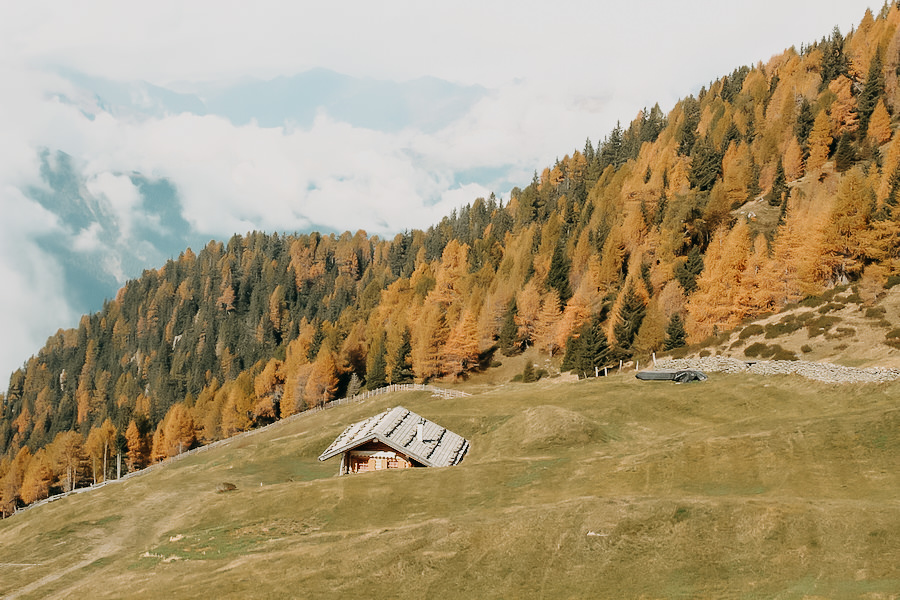 Hirzer Wanderung - A Tasty Hike - Suedtirol - Hierbst