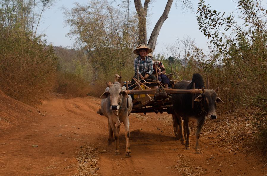 Synke A ride-myanmar