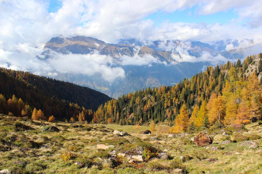 Wandern - Hirzer - Südtirol 17