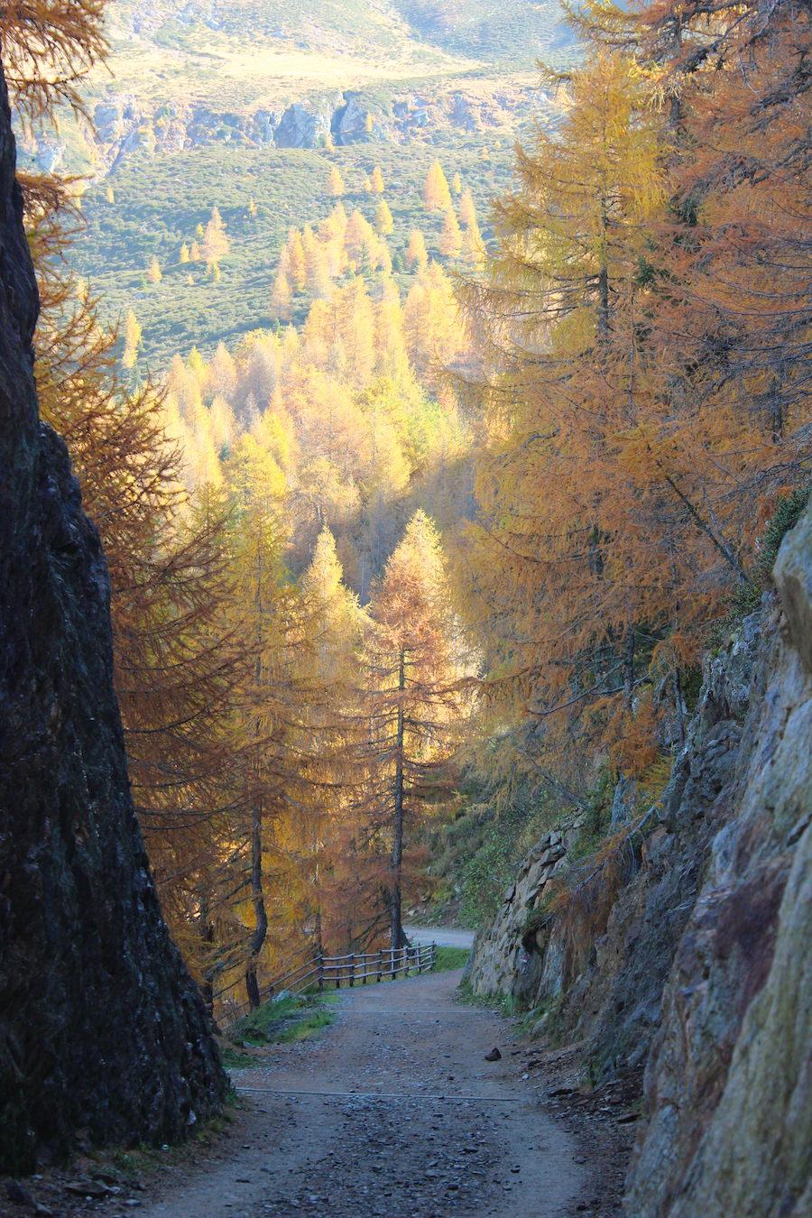 Wandern - Hirzer - Südtirol 4