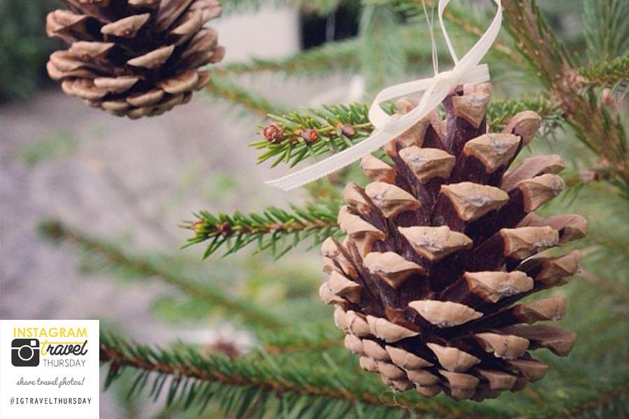 Titelbild Weihnachtsmarkt Kronburg