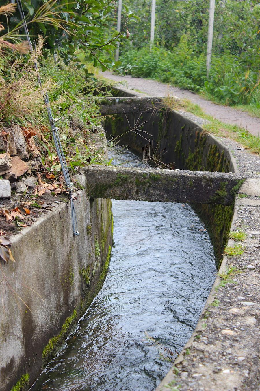 Waalwege Südtriol - Wasserlauf