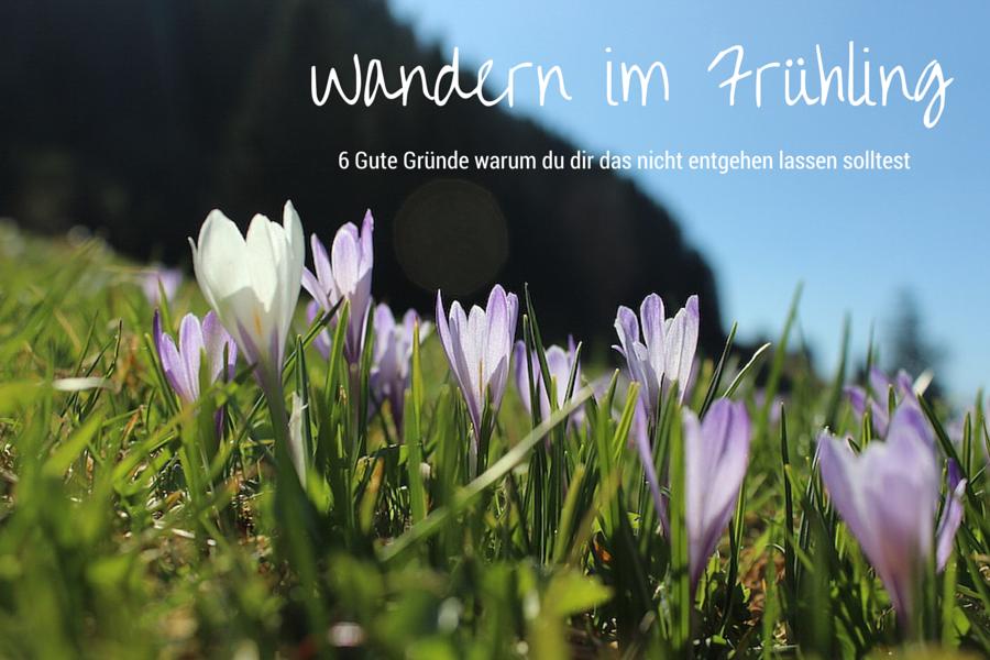 Wandern im Frühling - Warum du das nicht verpassen darfst