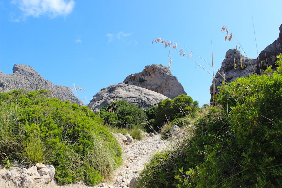 Wanderung Cala Bóquer Mallorca - Wanderweg