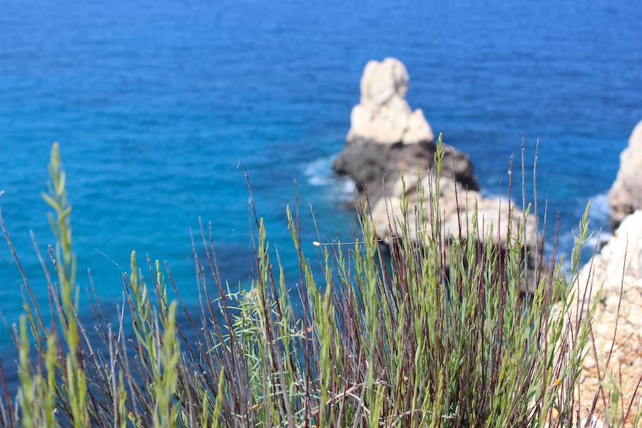 Mallorca Wanderung Cala Deià - Kalkfelsen 2