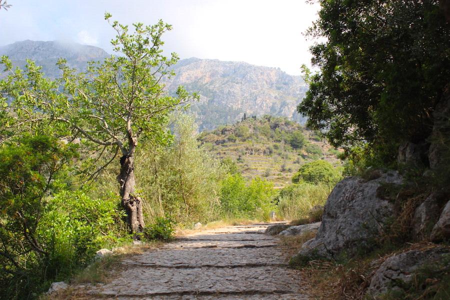 Mallorca Wanderung Cala Deià - Rückweg