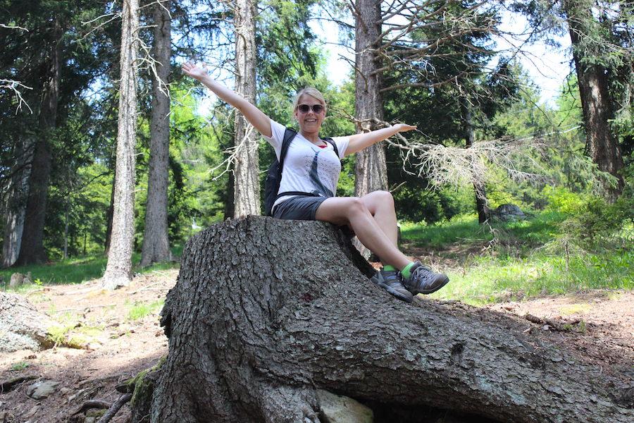 Vigiljoch Wandern Südtirol - Baumstumpf