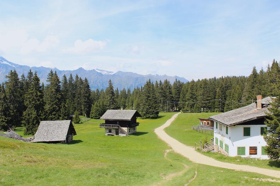 Vigiljoch Wandern Südtirol - Hochebene