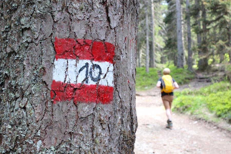 Vigiljoch Wandern Südtirol - Wanderweg