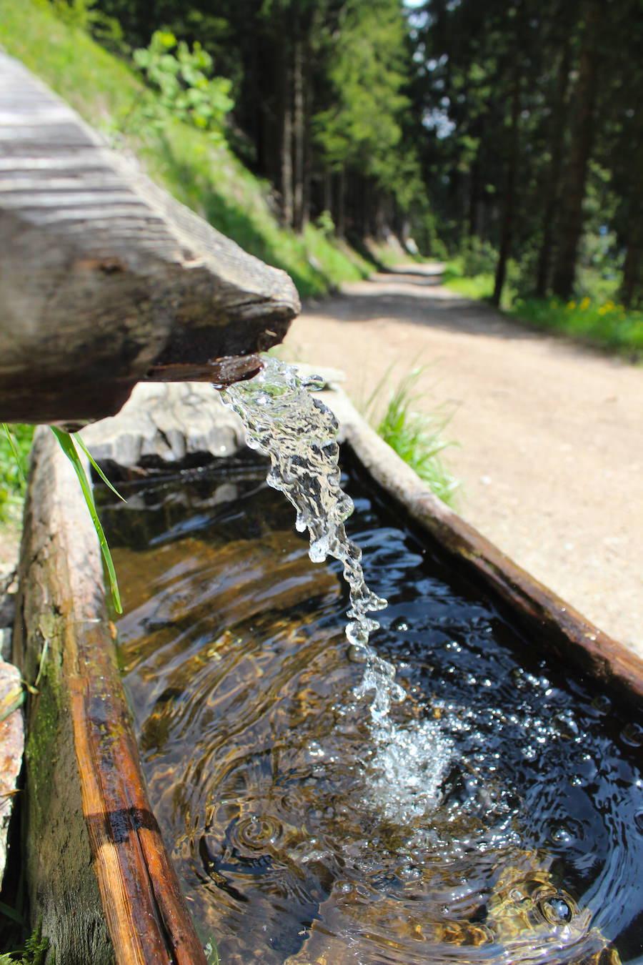 Vigiljoch Wandern Südtirol - Wasser