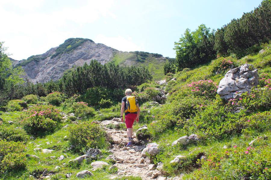 Vom Neunerköpfle zur Sulzspitze in Tirol - Klettern