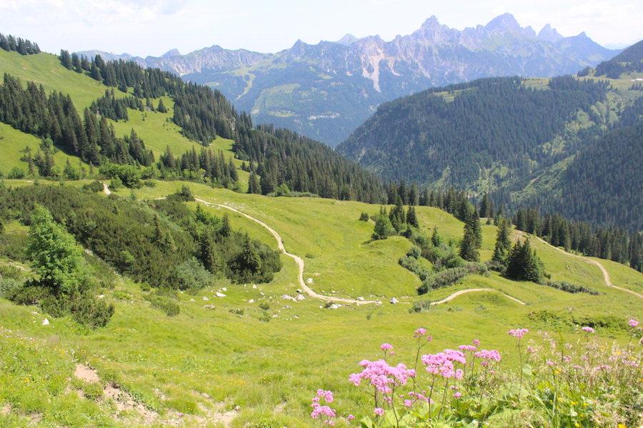 Vom Neunerköpfle zur Sulzspitze in Tirol - Wanderpanorama