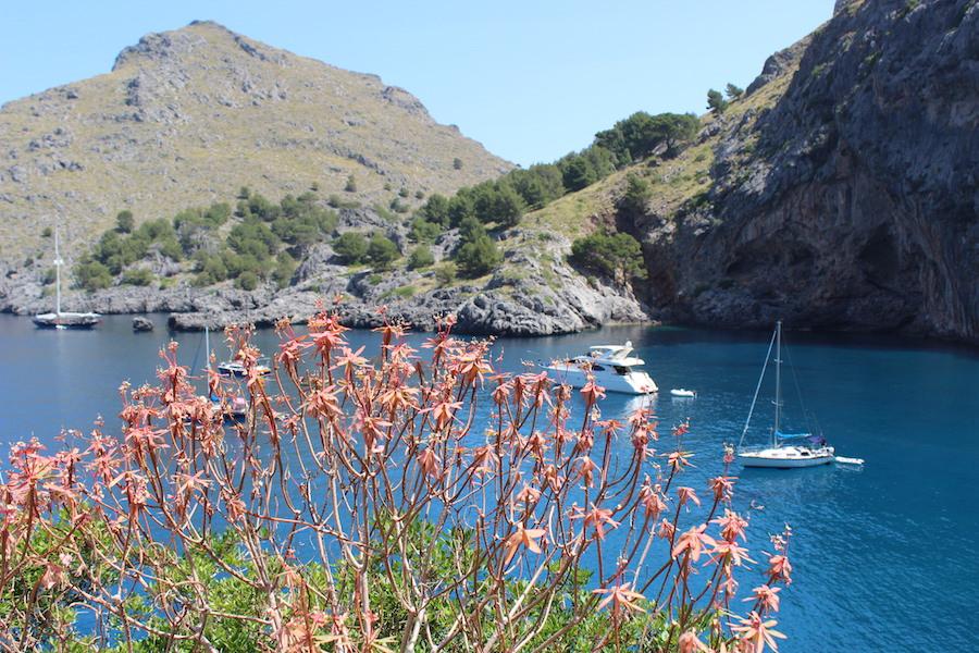 Wanderung Torrent de Pareis - Mallorca - Boote