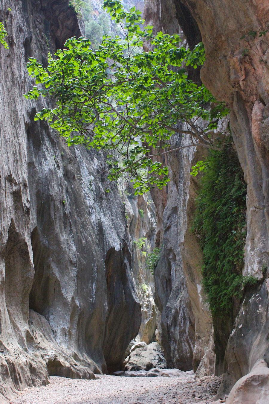 Wanderung Torrent de Pareis - Mallorca -Fast kein Sonnenlicht mehr