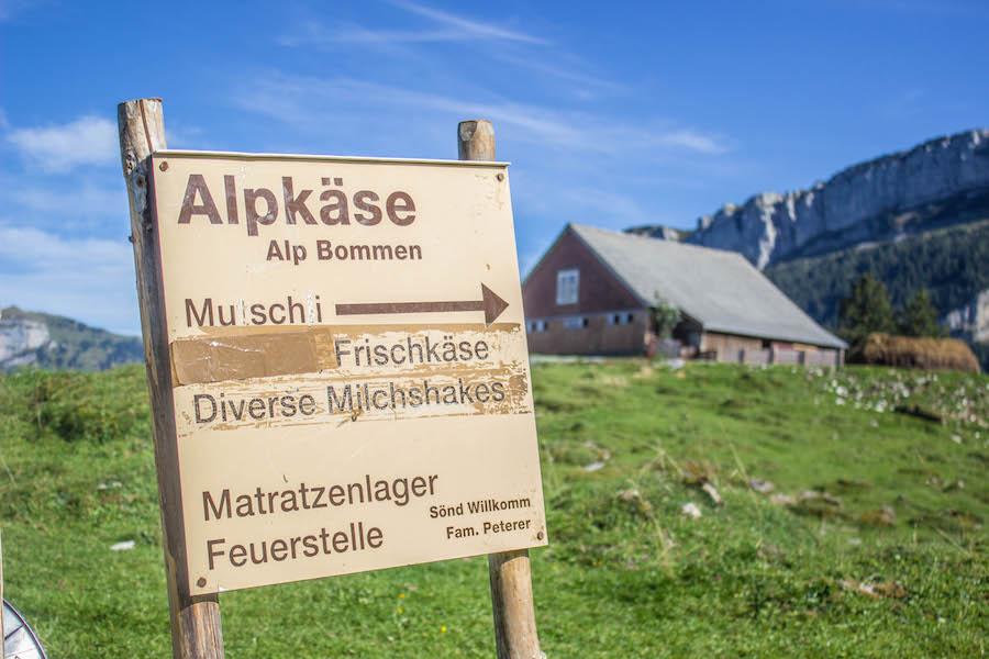 Wandern in den Schweizer Alpen - Alpkäse