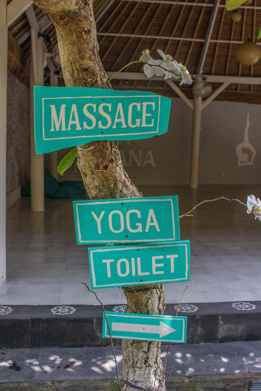 The Chillhouse - Yoga