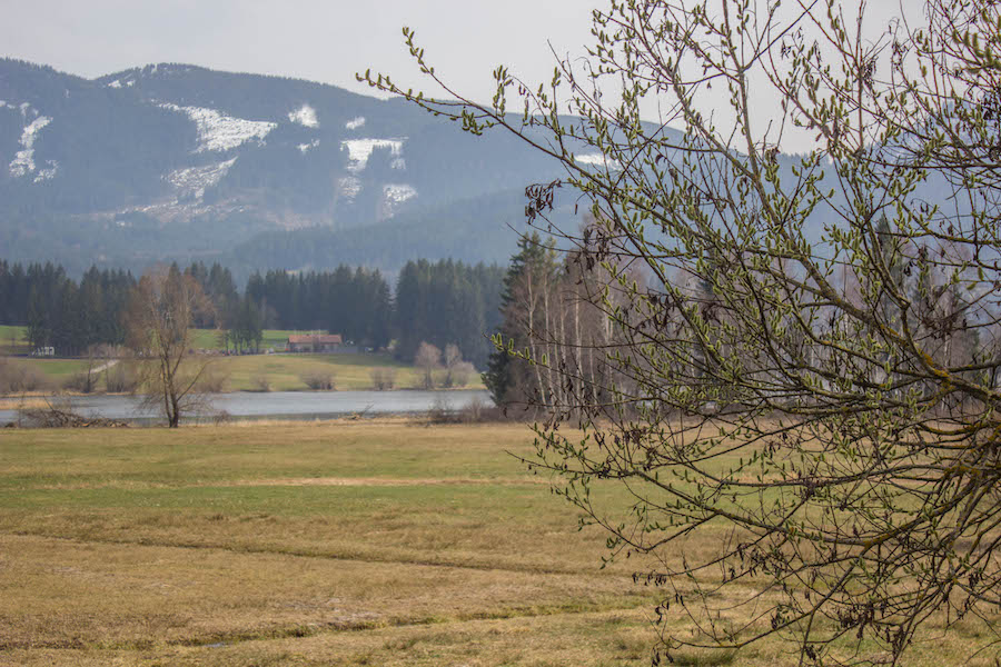 A Tasty Hike - Wandern am Gruentensee - Fruehling
