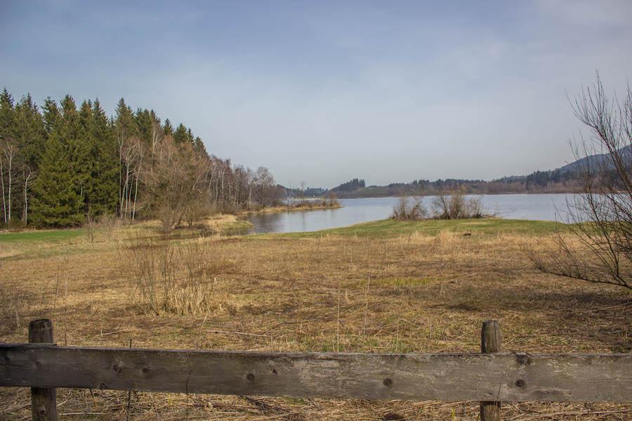 A Tasty Hike - Wandern am Gruentensee - Landschaft
