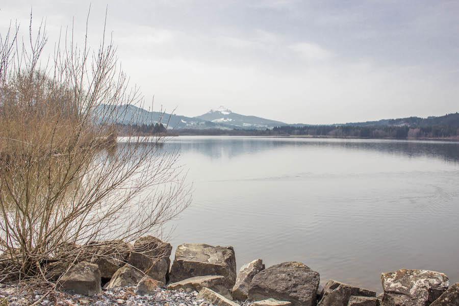 A Tasty Hike - Wandern am Gruentensee - Steine und Buesche