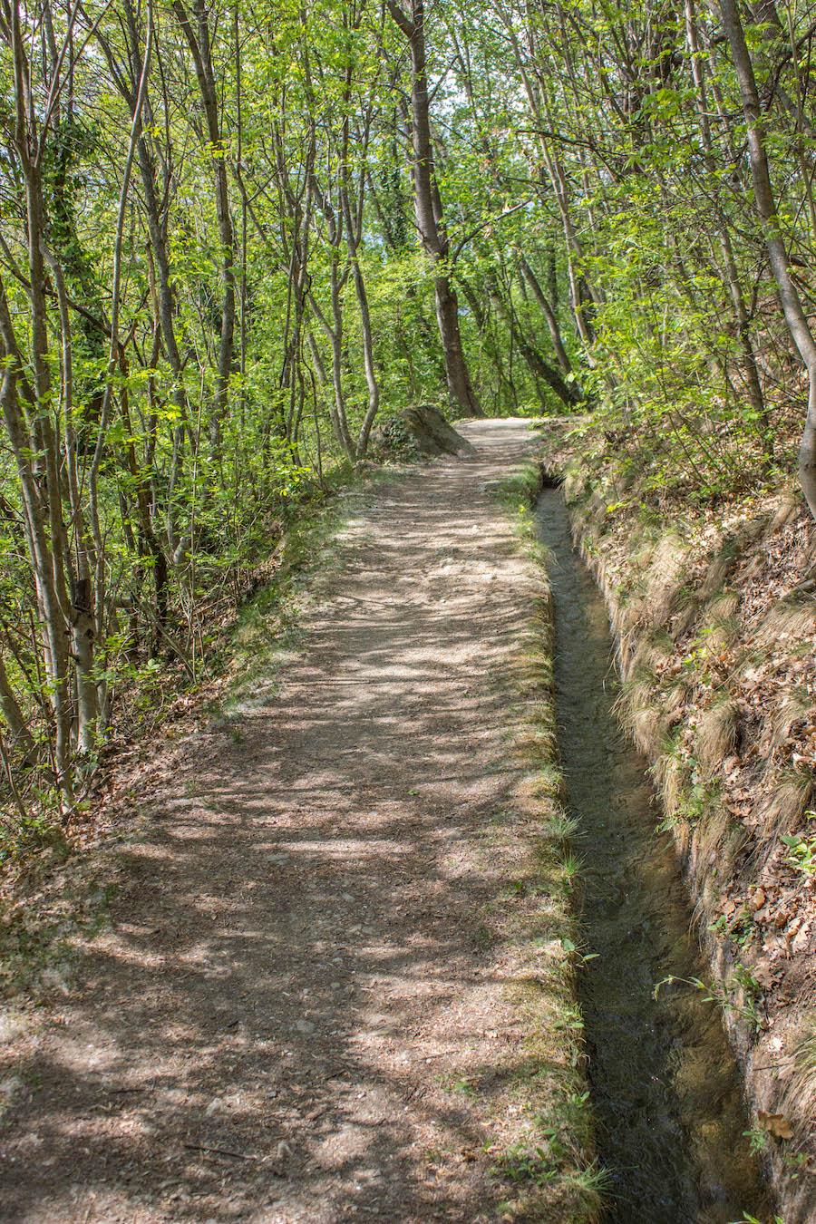 Naturnser Waalweg Suedtirol - Waalweg