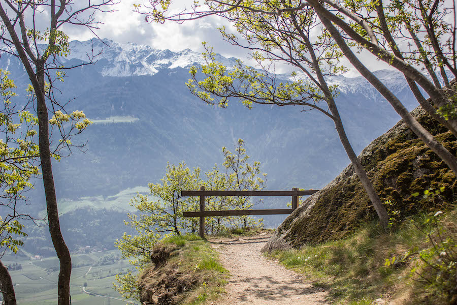Naturnser Waalweg Suedtirol - Weg mit Aussicht