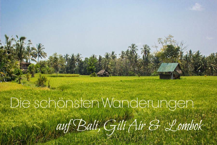 Wanderungen auf Bali