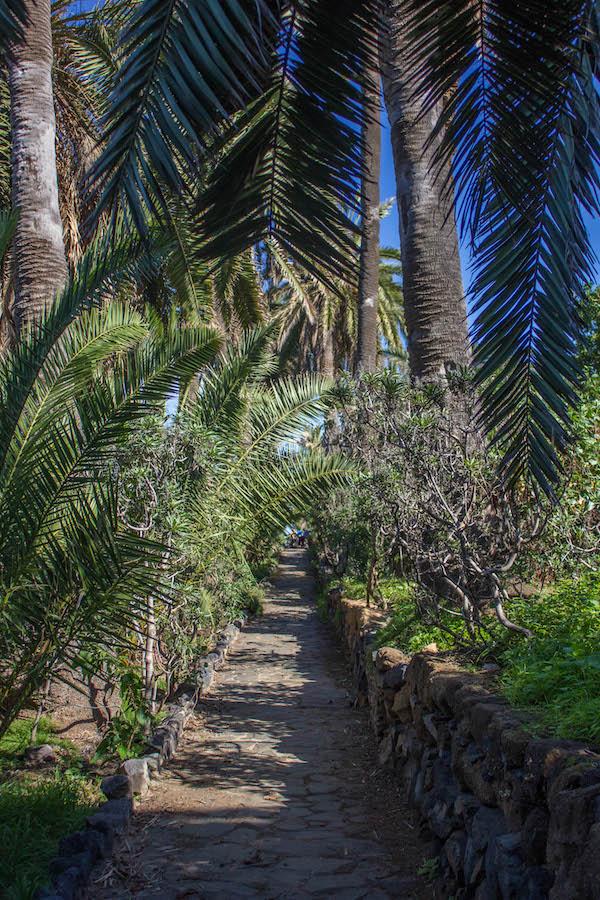 kuestenwanderung-puerto-de-la-cruz-teneriffa-wanderweg
