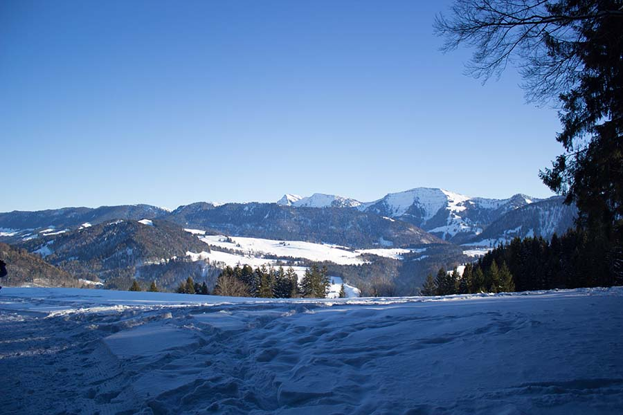 Premium Winterwanderweg Sinswang im Allgaeu - Nagelfluhkette