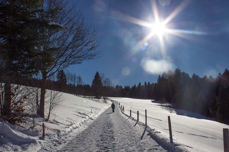 Premium Winterwanderweg Sinswang im Allgaeu - Planierter Wanderweg