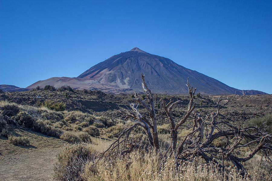 Wanderung Teneriffa - Hochebene - El Teide 2