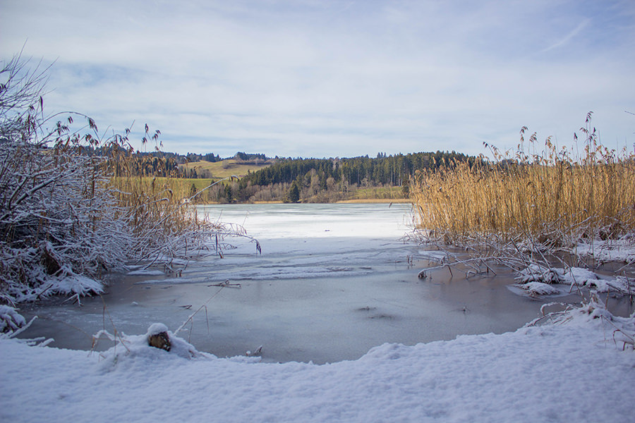 Wanderung Niedersonthofener See - Schnee