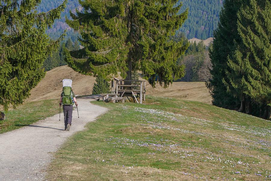 Wandern am Huendle - Wandern am Krokusfeld