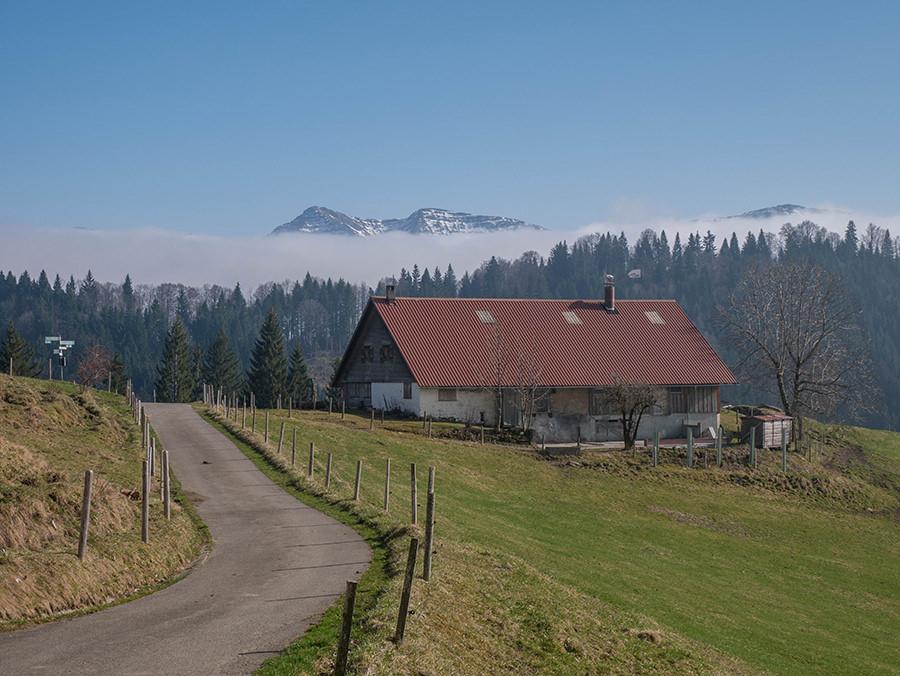 Wandern in Oberstaufen - Wanderung Kalzhofener Hoehe - Alpe mit Alpenpanorama