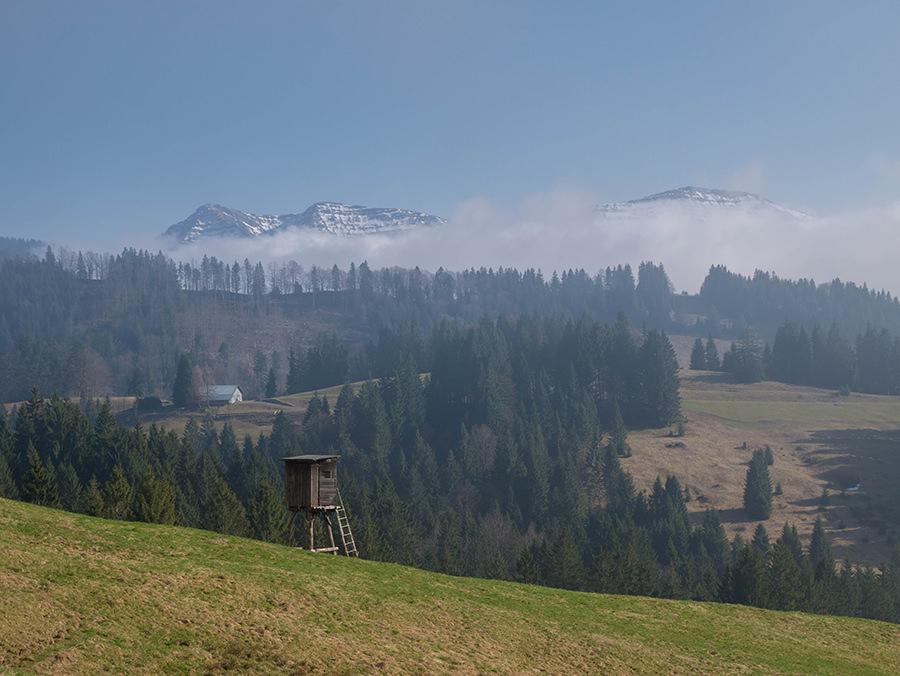 Wandern in Oberstaufen - Wanderung Kalzhofener Hoehe - Schiessstand mit Alpenpanorama