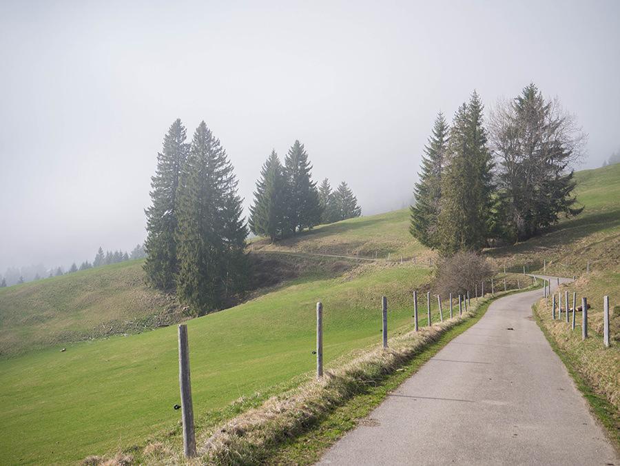 Wandern in Oberstaufen - Wanderung Kalzhofener Hoehe - Wanderweg