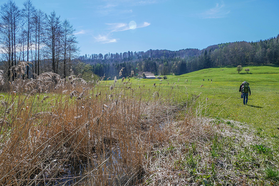 Wandern in Teufelskueche bei Oberguenzburg - Guenztal