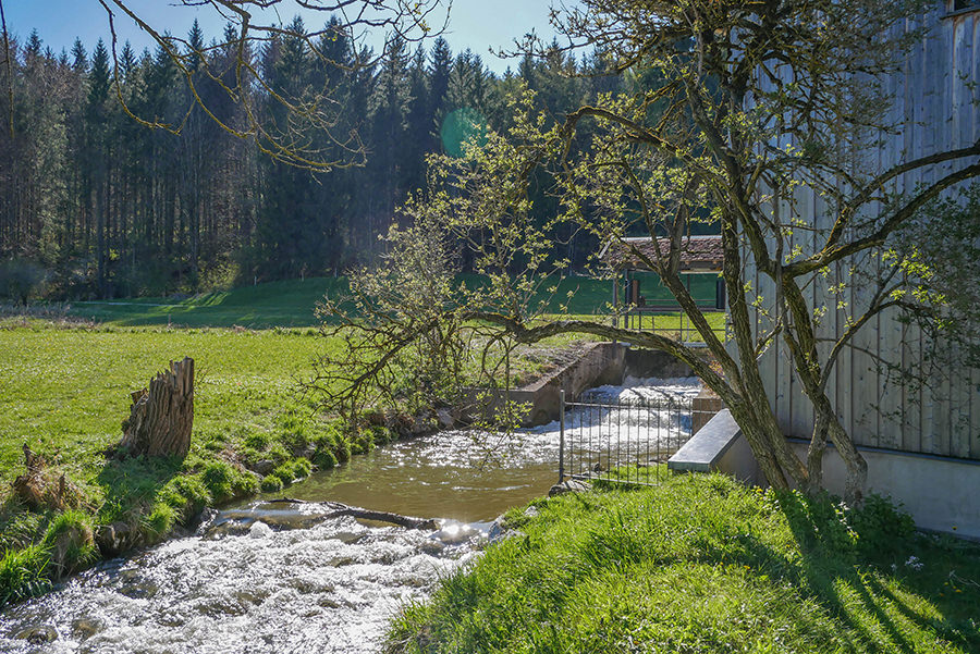 Wandern in Teufelskueche bei Oberguenzburg - Muehle