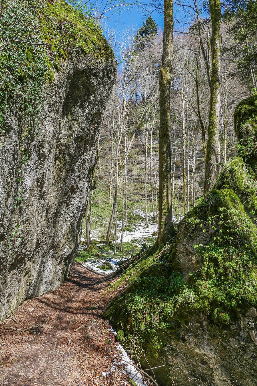 Wandern in Teufelskueche bei Oberguenzburg - Teufelskueche Weg
