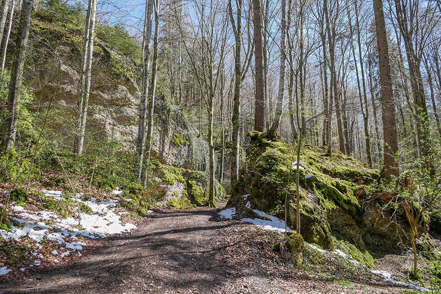 Wandern in Teufelskueche bei Oberguenzburg - Ueberblick