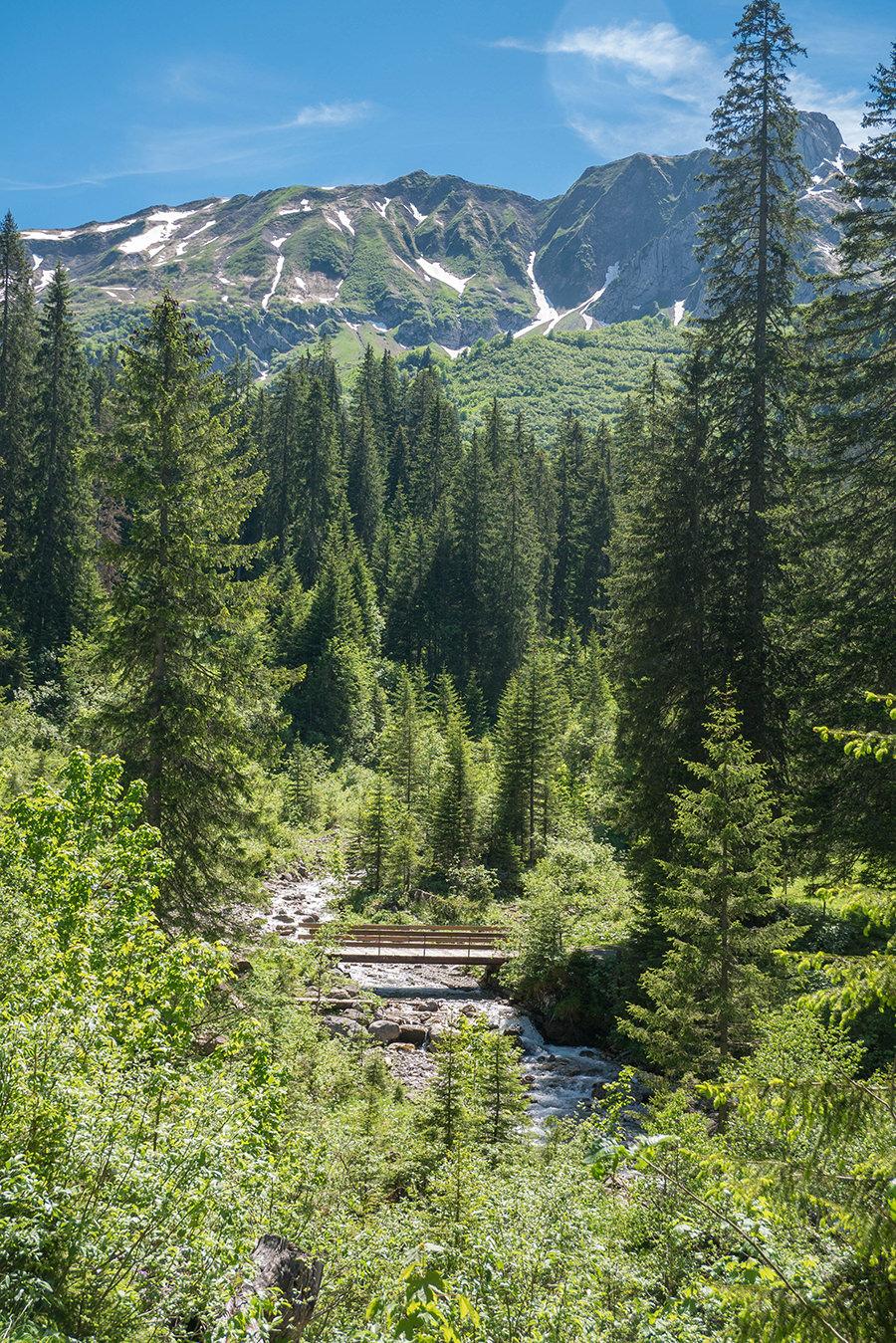 Wanderung im Baergunttal - Bruecke