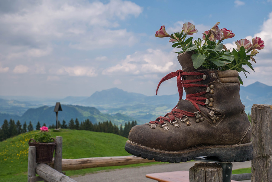 Wanderung Soellereck bei Oberstdorf - Alpe Schrattenwang