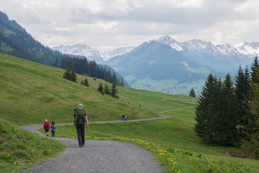 Wanderung Soellereck bei Oberstdorf - Wanderweg mit Bergsicht