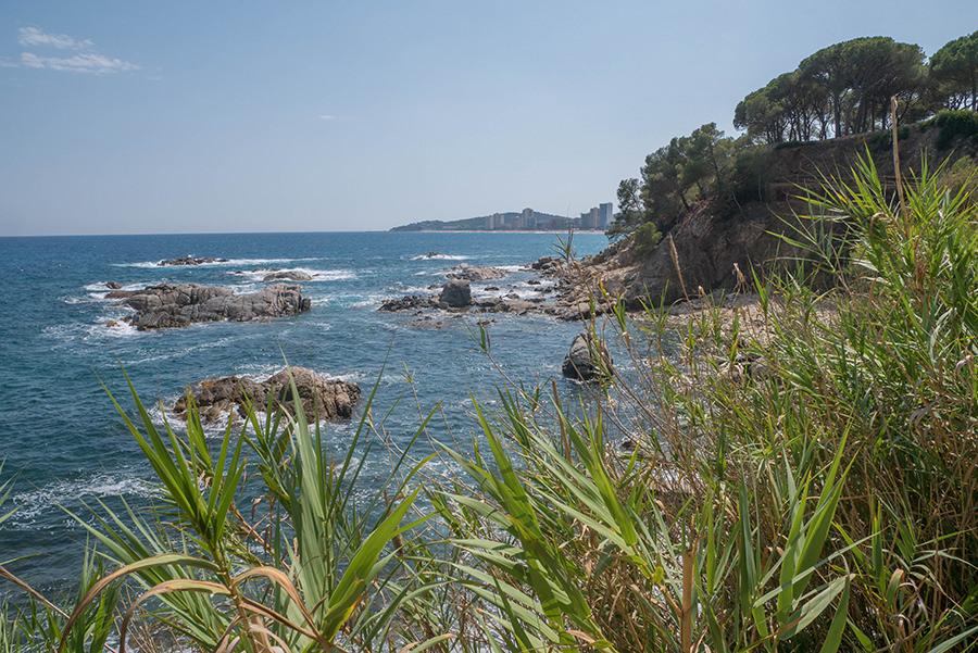 Wandern Costa Brava - GR 92 - Natur
