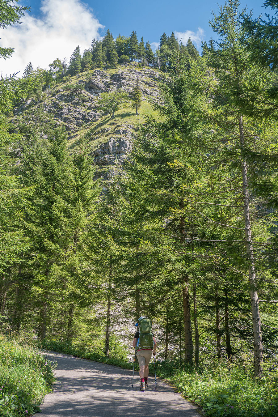 Oberjoch Wandern - Wanderung zum Spieser - Forststrasse