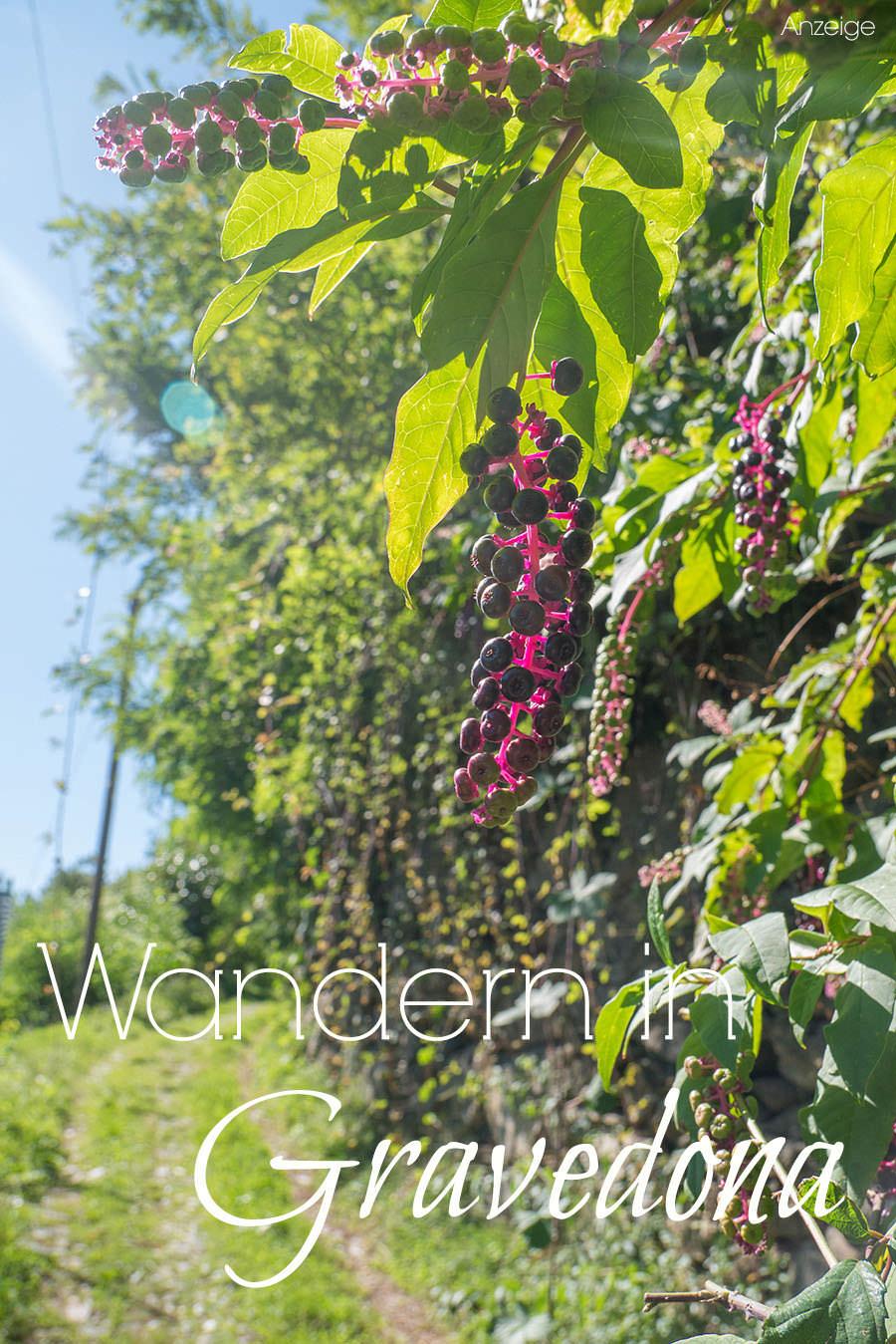 Wandern Gravedona - Pinterest