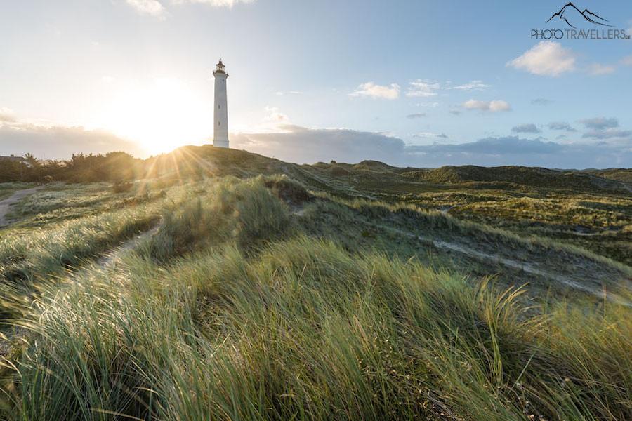 tipps-landschaftsfotografie-goldene-stunde